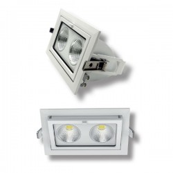 DOWNLIGHT ORIENTABLE IP